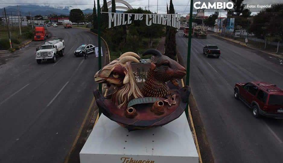 Artemio Caballero tira a la basura chivos satánicos de medio millón de pesos
