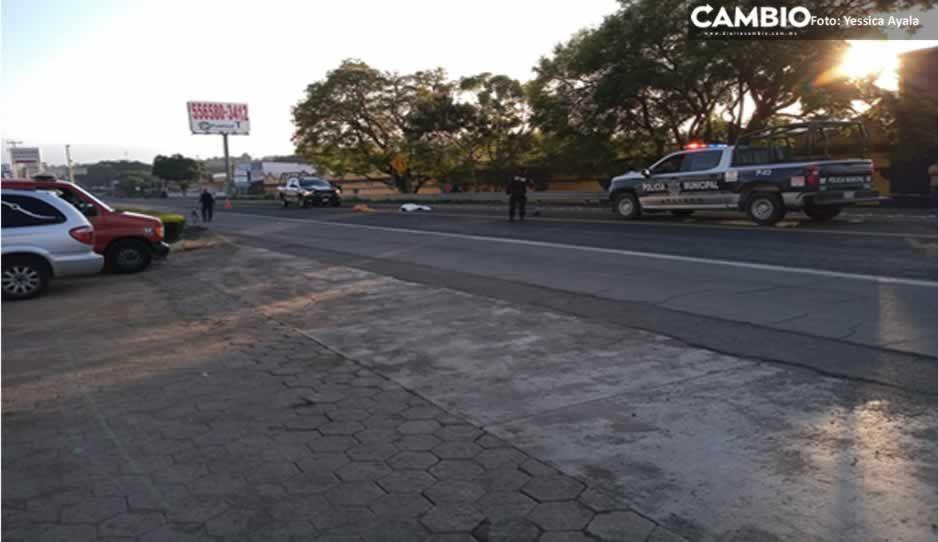 Muere atropellado al intentar cruzar la federal Atlixco-Puebla