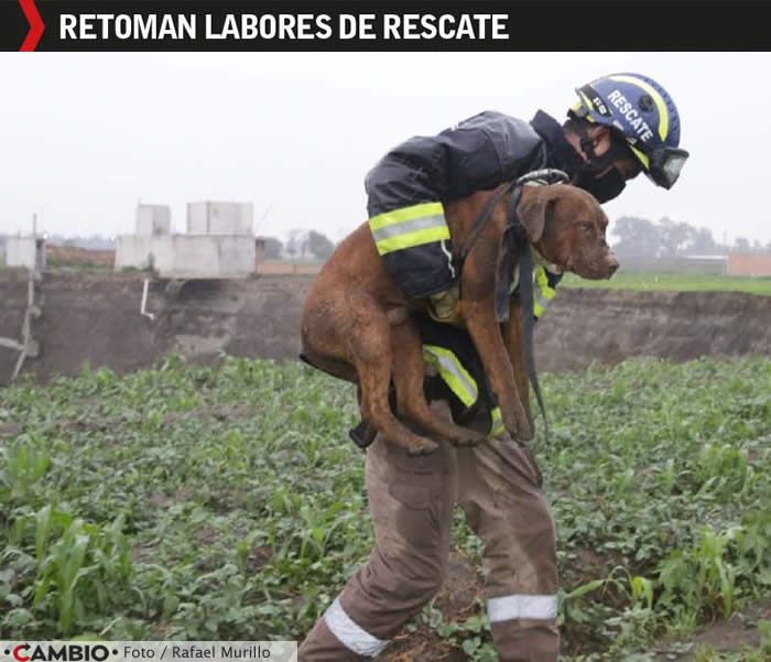 labores rescate spike