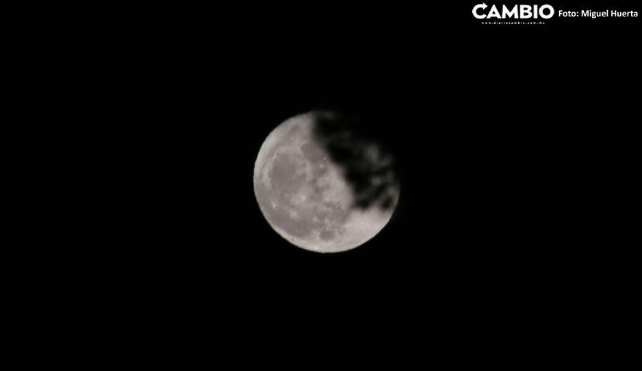 Luna Otoño.jpg