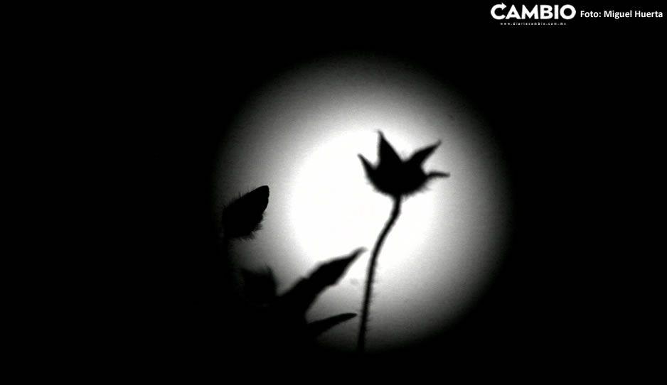 Luna Otoño 04.jpg