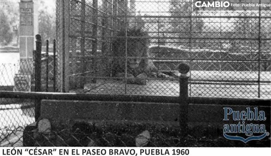 Paseo Bravo 07.jpg