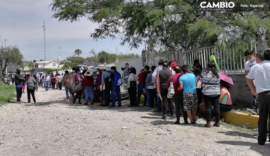 Vacuna region Tehucan 00.jpg
