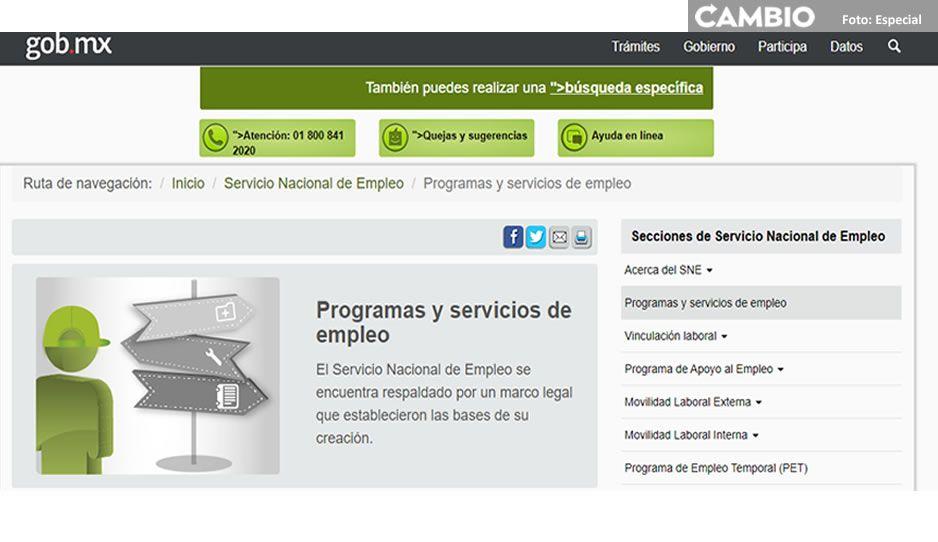 servicio nacional empleo.jpg