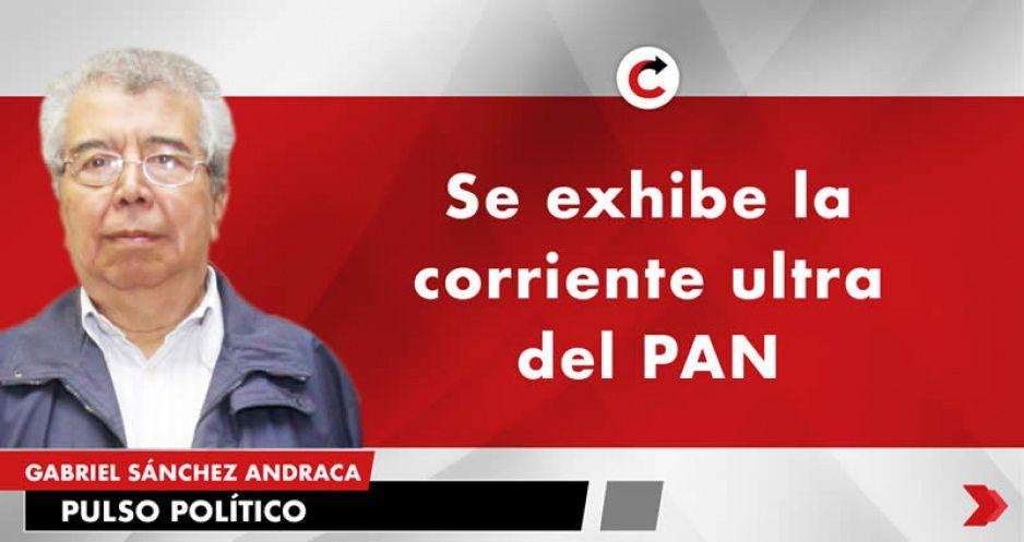 Se exhibe la corriente ultra del PAN