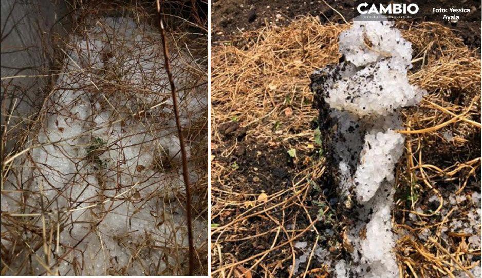 ¡Wow! En plena primavera cae fuerte granizada en la mixteca; no ocurría esto desde hace 85 años