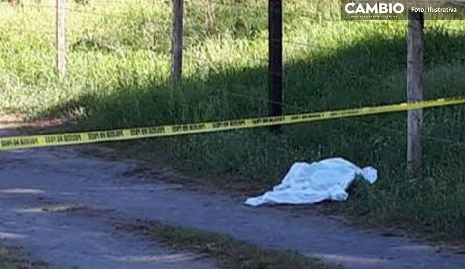 ¡Tragedia! Niño de 8 años muere tras caer de un árbol en Santa María Xonacatepec