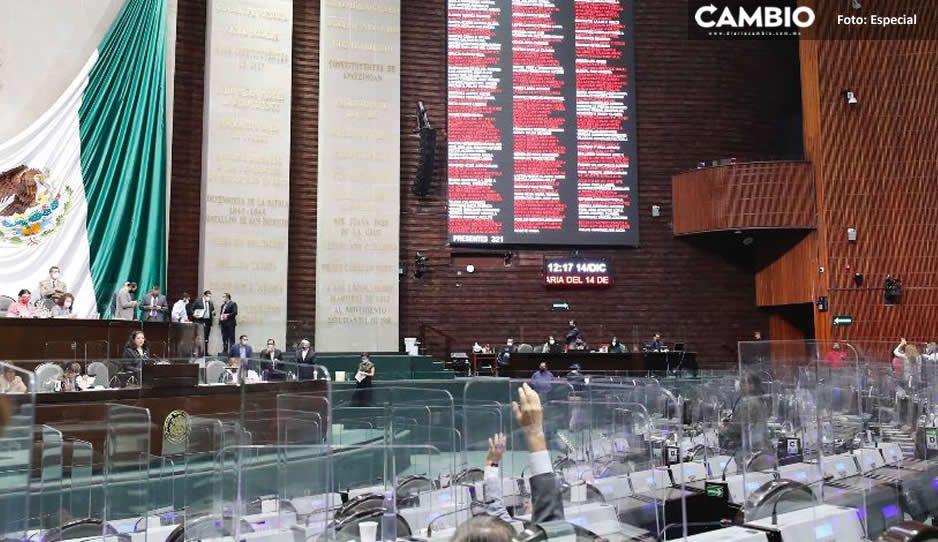 Diputados federales del PAN buscan otorgar mil 400 pesos mediante seguro de desempleo