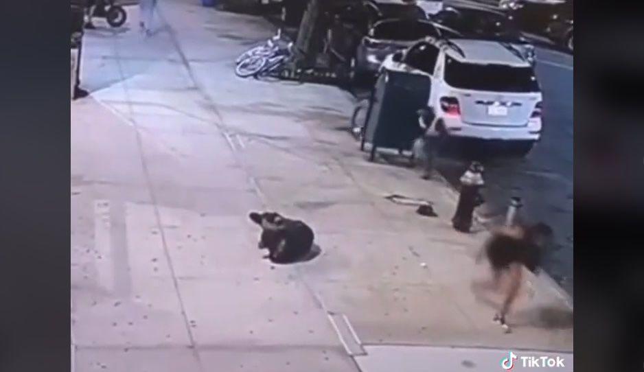 Viralizan en TikTok el momento en que joven finge su muerte para escapar de balacera (VIDEO)