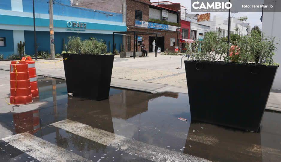 Obra malhecha de Claudia en la Plaza de la Salud inunda a decenas de comerciantes (FOTOS Y VIDEO)