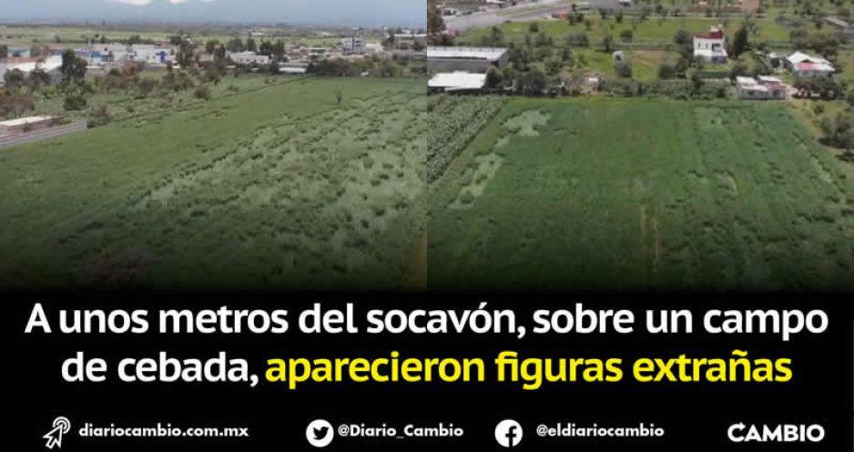 Un mundo nos vigila: aparecen señales extraterrestres en Santa María Zacatepec (FOTOS Y VIDEO)