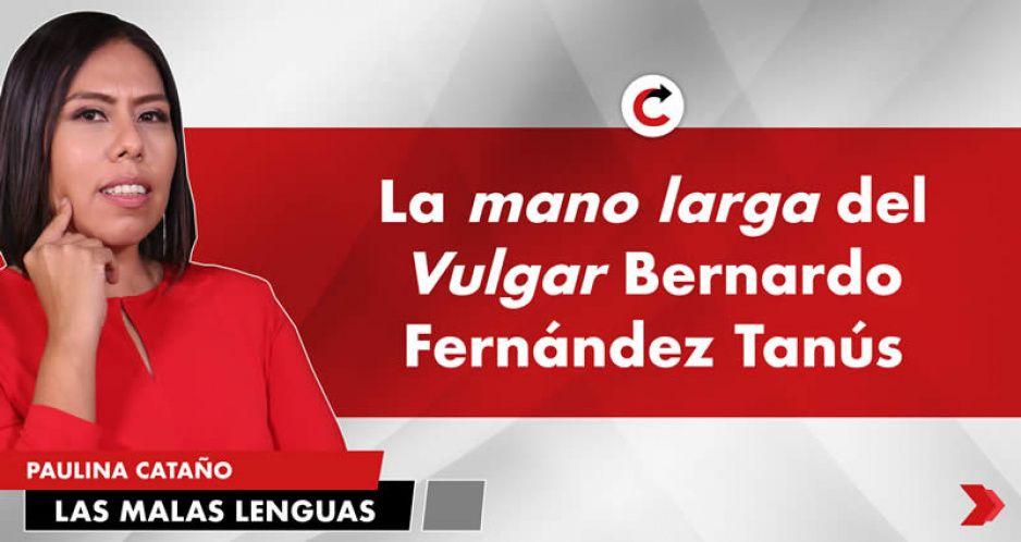 La mano larga del Vulgar Bernardo Fernández Tanús