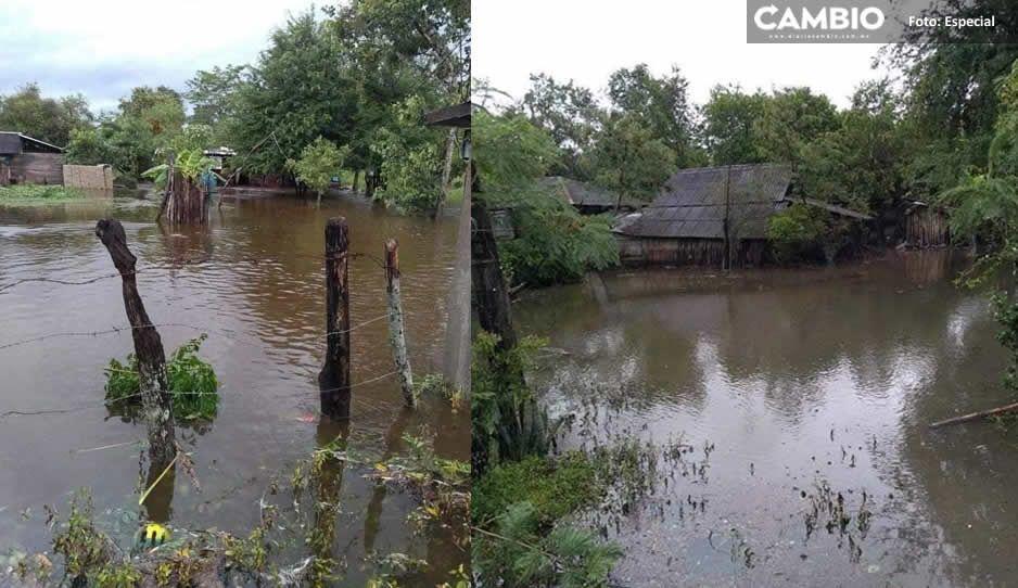 Grace deja terribles daños en la Sierra Norte y el Río Pantepec amenaza desbordarse (FOTOS)