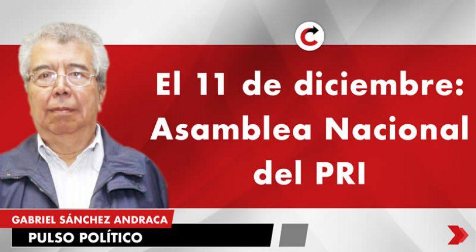 El 11 de diciembre: Asamblea Nacional del PRI