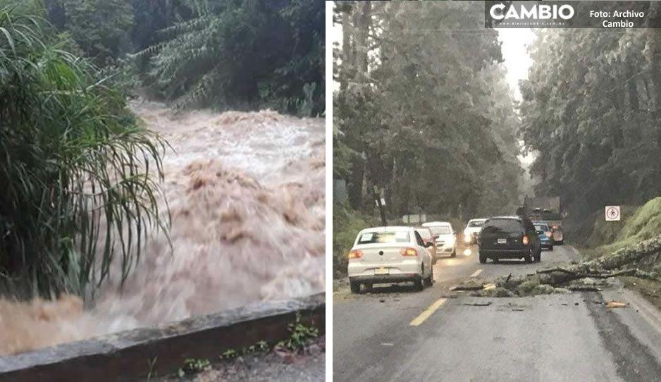 """Puebla reportó más municipios afectados por """"Grace""""; mil 356 comunidades sufrieron daños"""