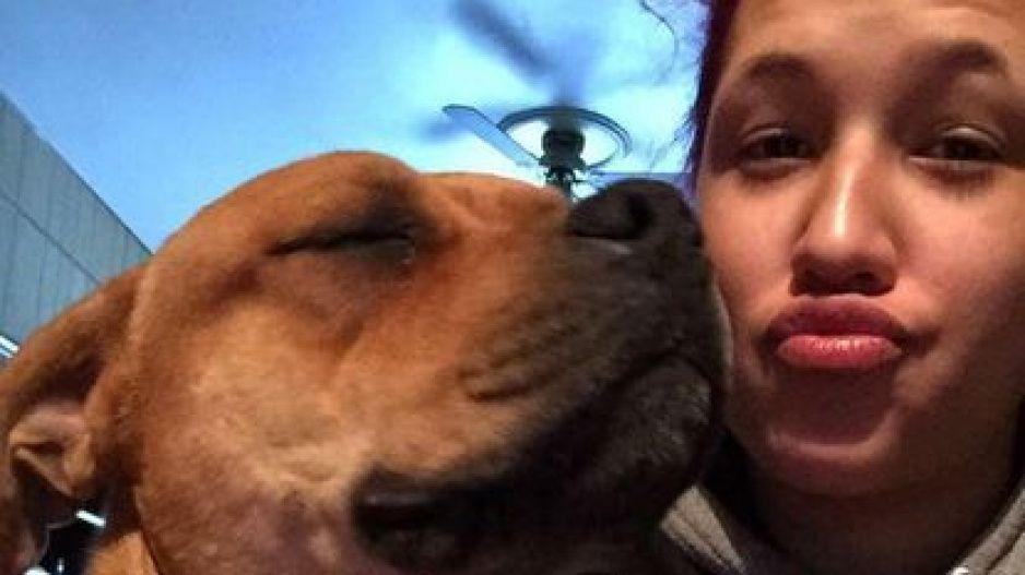 Busca perrito para adoptar y encuentra en un refugio al que perdió hace dos años