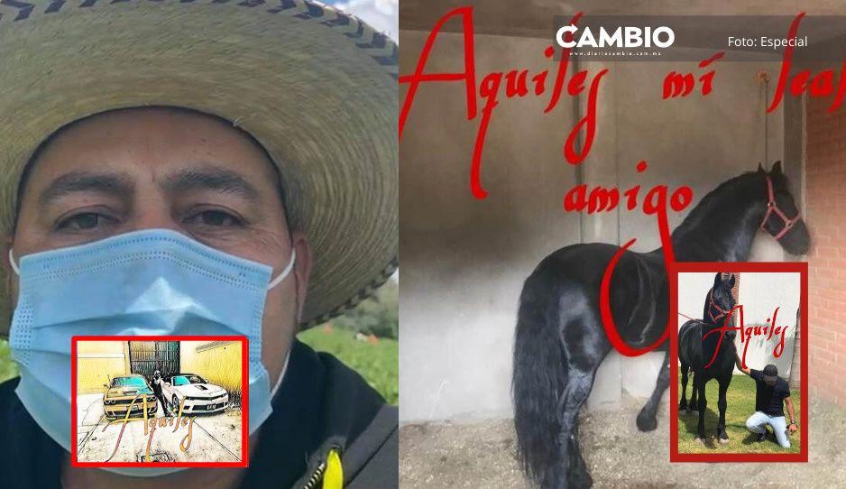 Aquiles, el nombre que usa El Toñín en sus negocios, caballos y autos en Palmarito (FOTOS)