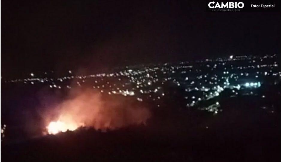 Alertan por incendio provocado dentro de la Reserva de la Biósfera Tehuacán-Cuicatlán