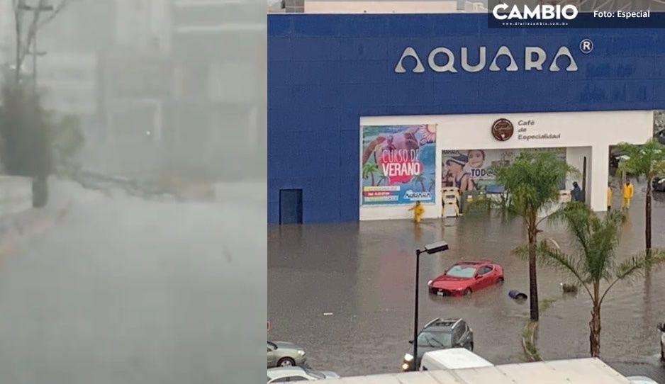 Tormenta hace sufrir a fifís en Angelópolis: se inundan calles y árboles caídos bloquean accesos (FOTOS y VIDEO)