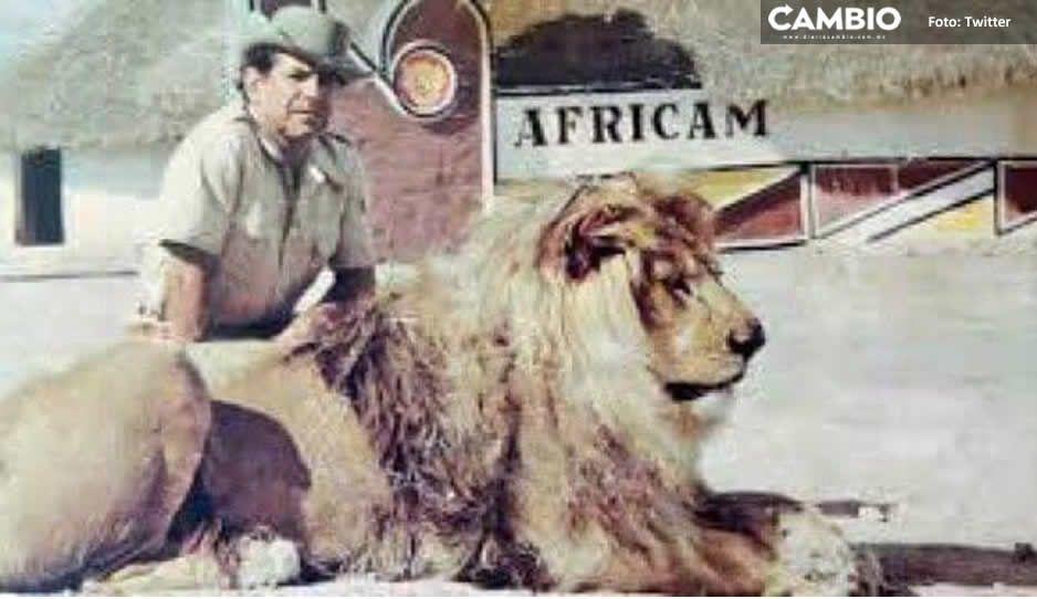Hoy hace 49 años, Africam Safari abrió sus puertas por primera vez para los poblanos