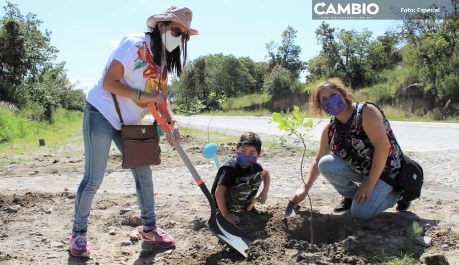Inicia campaña de reforestación en Haras (FOTOS)