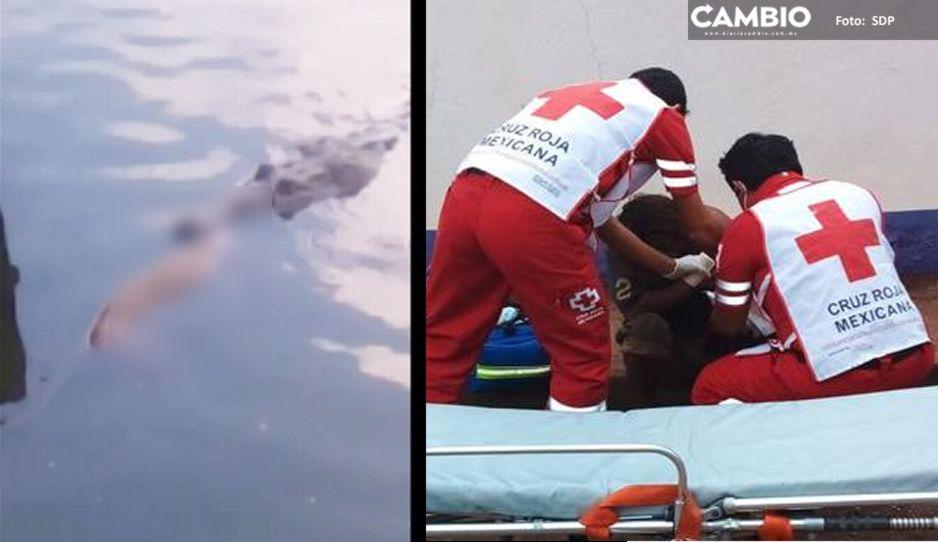 VIDEO: Cocodrilo ataca y arranca el brazo a indigente en Tabasco