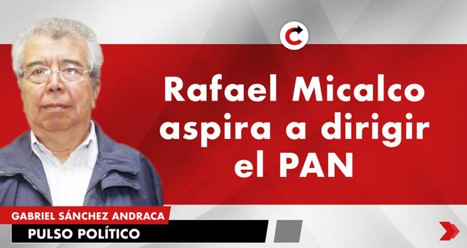 Rafael Micalco aspira a dirigir el PAN