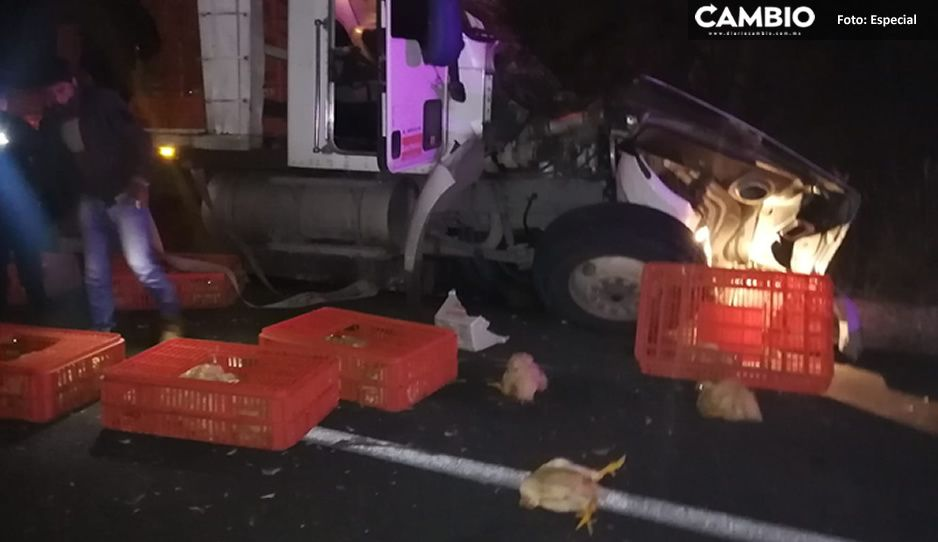 ¡Pobrecitos! Pollitos quedan regados tras aparatosa volcadura en carretera rumbo a Teziutlán