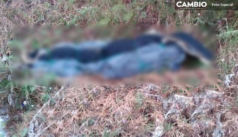 Hallan cadáver encobijado atrás de Outlet en Coronango