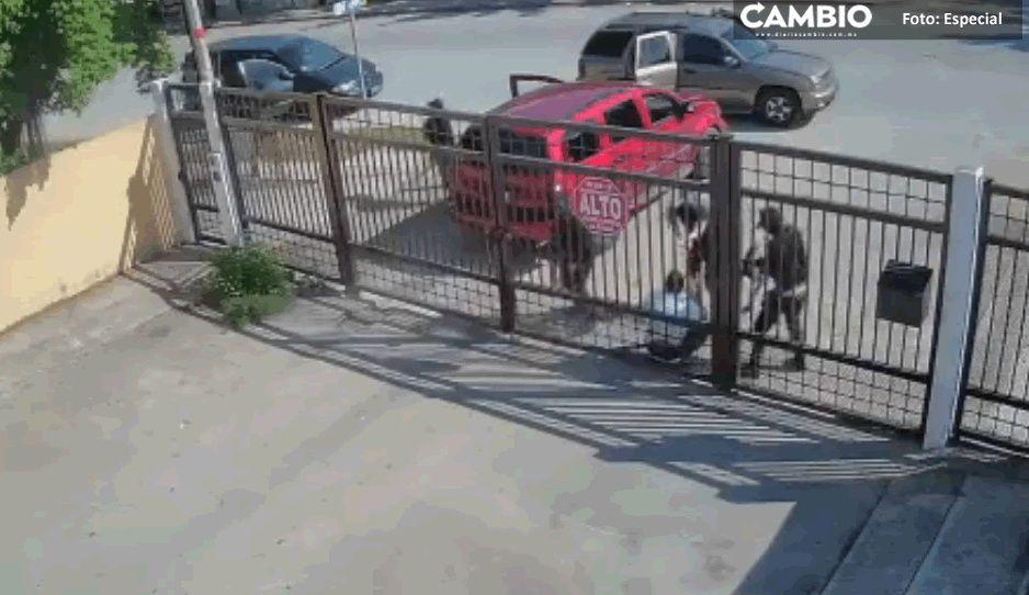 No es una escena de Narcos: así secuestraron a ex tránsito municipal de Cancún (VIDEO)