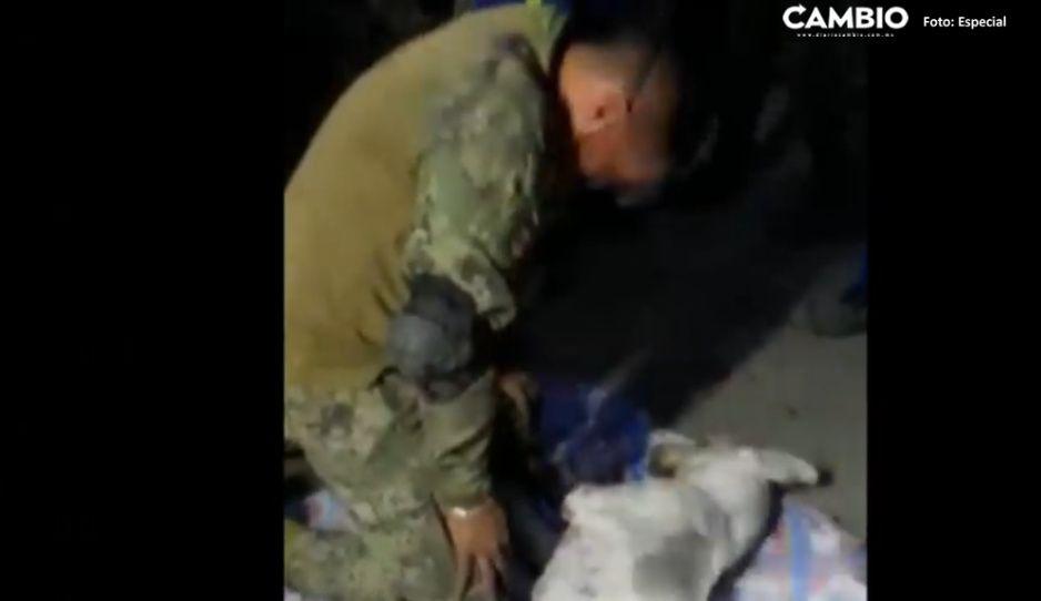 (VIDEO) Entre lágrimas, marino intenta salvarle la vida a perrito afectado por derrumbe de Cerro Chiquihuite