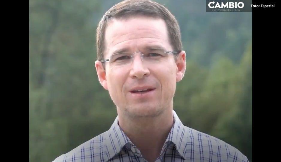 Ricardo Anaya alucina que Morena pierde preferencia en el país: las alianzas sí funcionan (VIDEO)