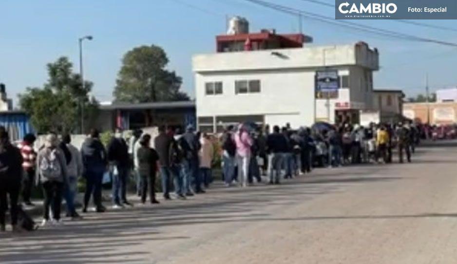 Filas de hasta 2 kilómetros para recibir vacuna AntiCovid en el Ameyal de Cuautlancingo
