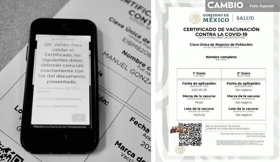 Paso a paso: Así puedes descargar tu certificado de vacunación vs covid vía WhatsApp