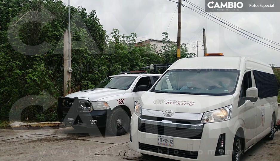 Tras enfrentamiento en Tlaltenago, catean dos casas y localizan 98 migrantes (VIDEO)
