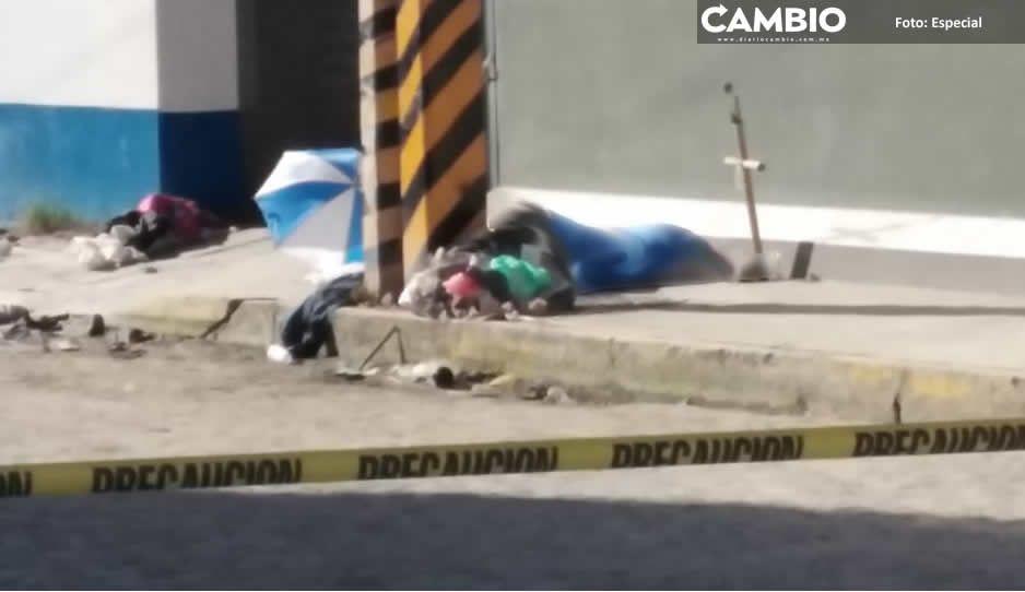 Don Fer y Juanito, los homeless héroes que cuidaron a lomitos hasta la muerte (VIDEOS)
