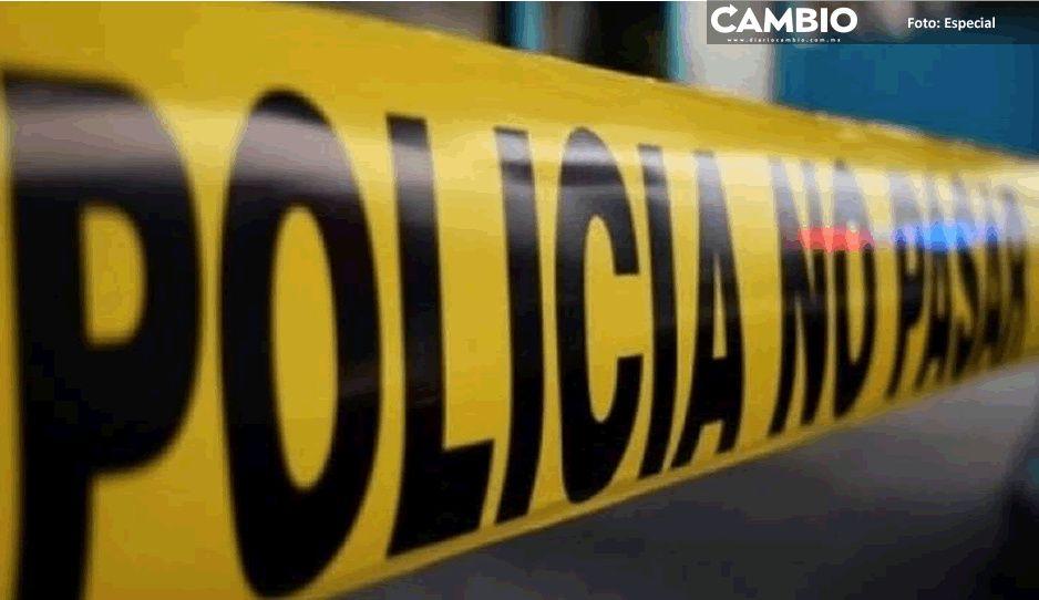 Mueren varios caballos tras volcadura de tractocamión en carretera federal Puebla-Tecali (VIDEO)