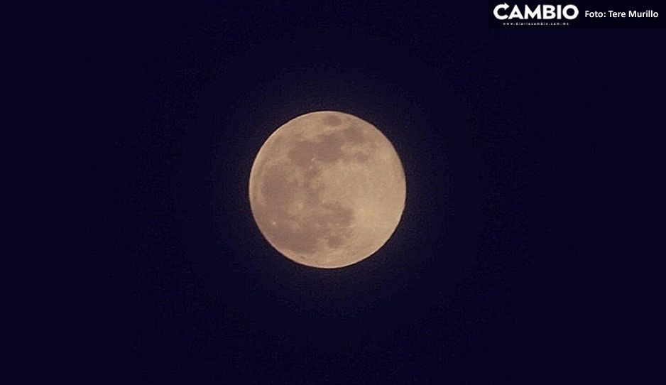 FOTO: ¡Espectacular! Así se vivió en Puebla la Súper Luna rosa