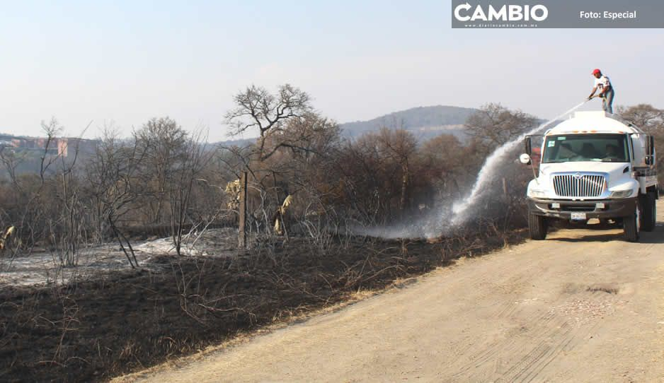 Guardabosques de Haras y brigada de medio ambiente controlan peligroso incendio forestal (FOTOS)