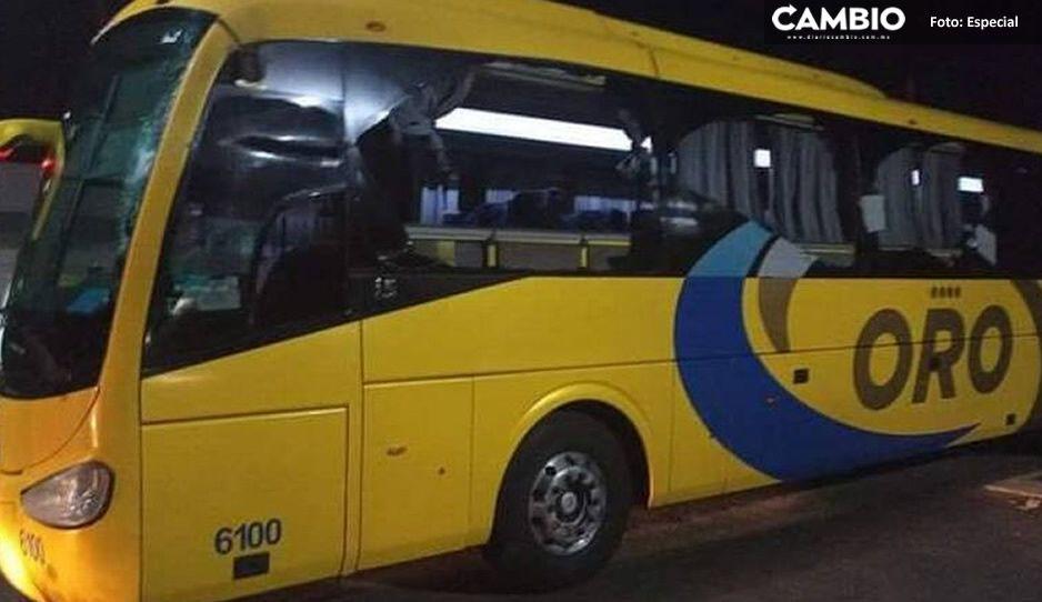 Autobús Oro choca vs un vehículo de carga en la carretera Acatlán- Tehuitzingo