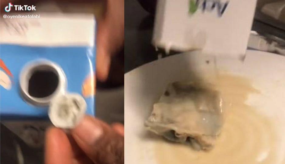 VIDEO: Tiktoker encuentra animal muerto dentro de un envase de leche