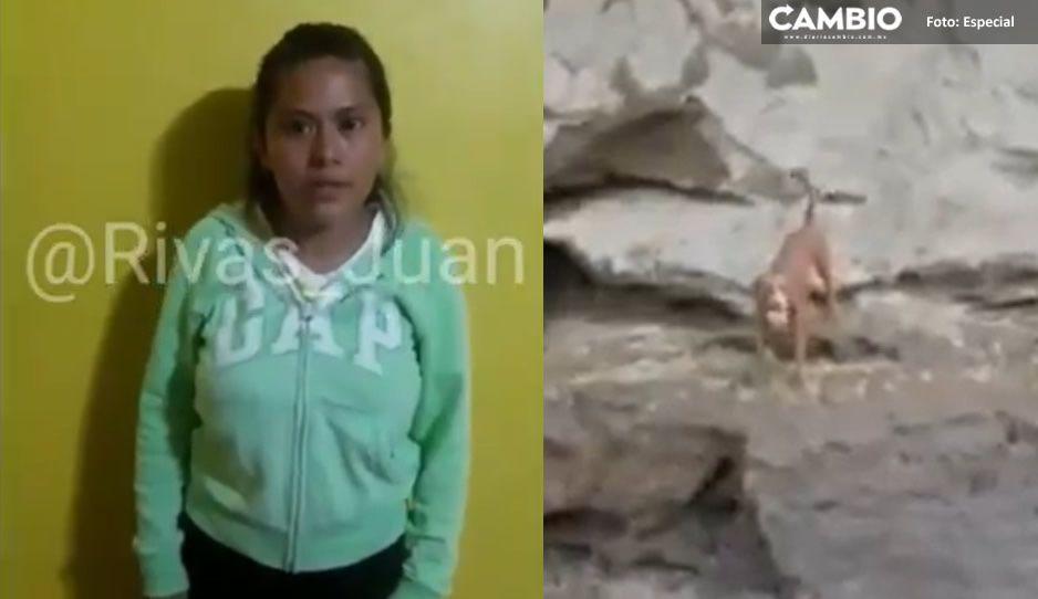 VIDEO: Así Fátima, dueña del perrito Spay pidió al gobierno rescatar al lomito