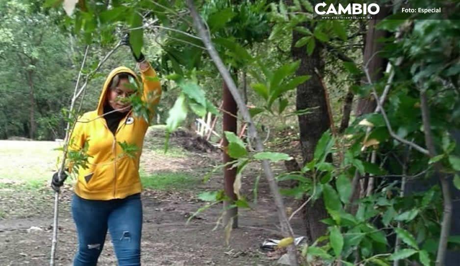 Haras invita a su campaña de reforestación con talleres ambientales (FOTOS)