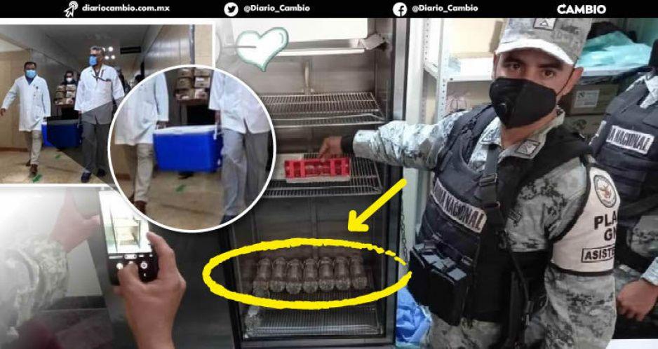 Llegan las vacunas: usan hieleras y refrigeradores comunes para guardarlas (FOTOS)