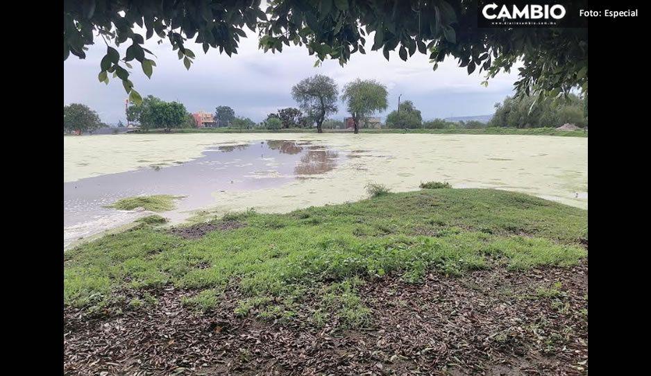 ¡Tremendo aguacero! Hay daño de casas y tierras de cultivo en Yehualtepec y Tlacotepec de Juárez (VIDEO