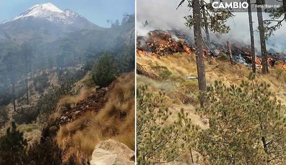 Veracruz solicita ayuda urgente de Puebla; llevan 5 días combatiendo incendio en el Citlaltepelt