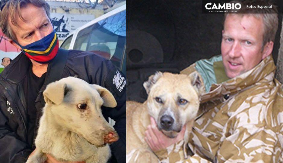 Amante de lomitos; fundador de ONG no quiere dejar Afganistán sin animales que cuidó
