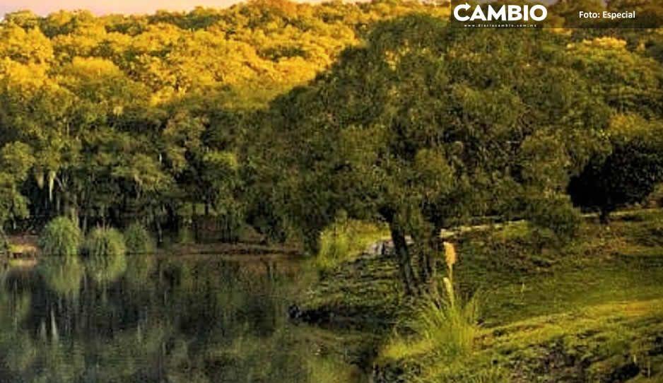 Haras y Flor del Bosque, un ejemplo de recarga natural de acuíferos (FOTOS)