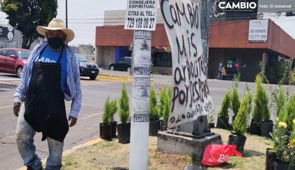 Por pandemia, Abuelito José intercambia árboles por despensa o ropa