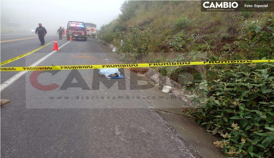 Atropellan a abuelita de 70 años en Duraznillo, Tlatlauquitepec